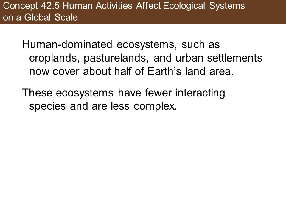 These ecosystems have fewer interacting species and are less complex.