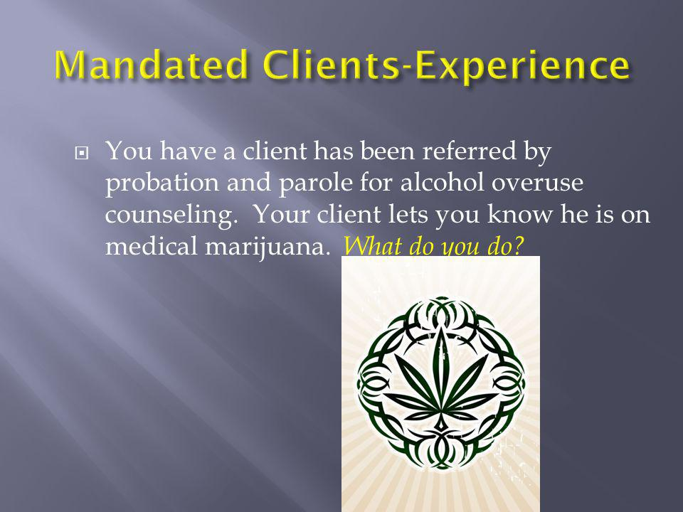 Mandated Clients-Experience