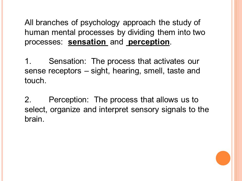 All branches of psychology approach the study of human mental processes by dividing them into two processes: sensation and perception.