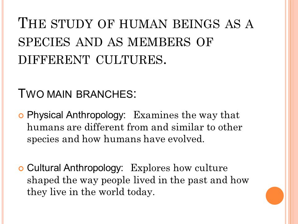 The study of human beings as a species and as members of different cultures. Two main branches: