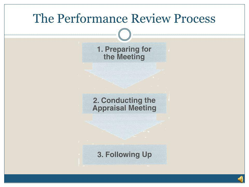 The Performance Review Process