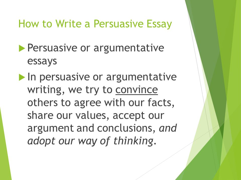 how long is a college essay supposed to be And while the newly touted design is supposed  which provides deadlines and essay prompts for the top 200 schools college  what to know before submitting .