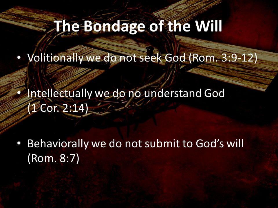 The Bondage of the Will Volitionally we do not seek God (Rom. 3:9-12)