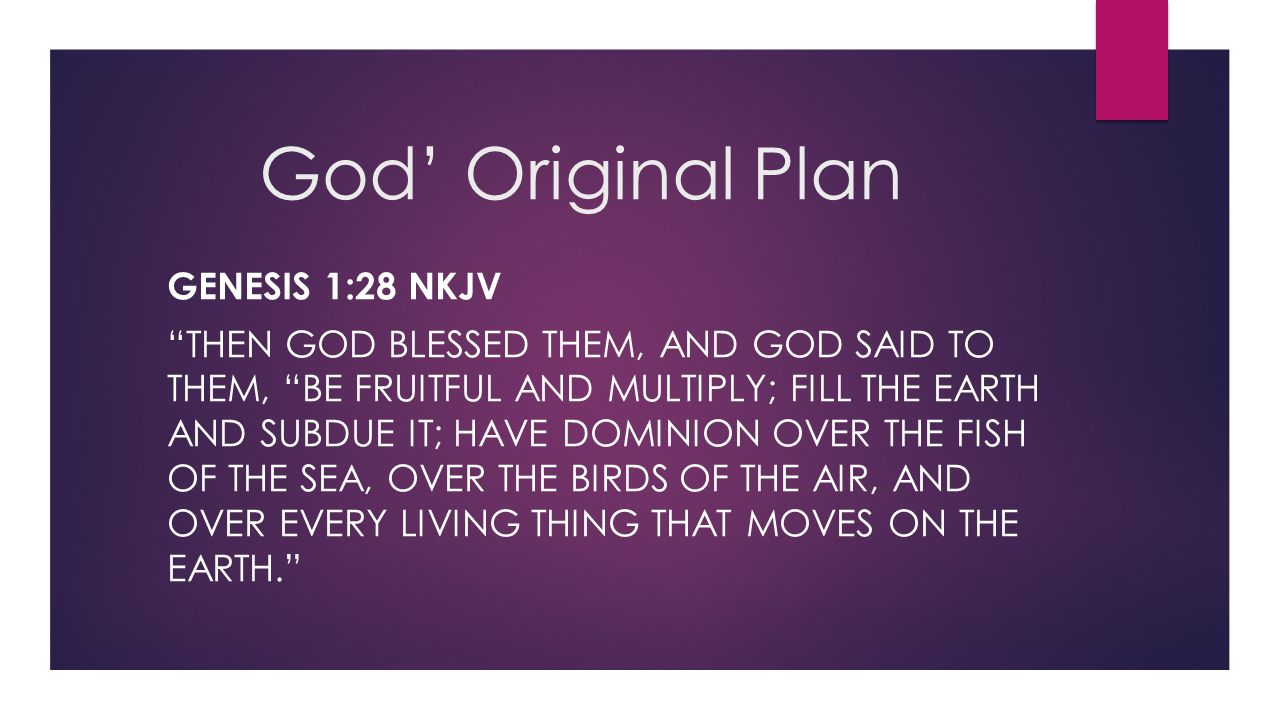 God' Original Plan Genesis 1:28 NKJV