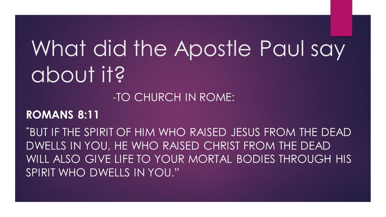 What did the Apostle Paul say about it
