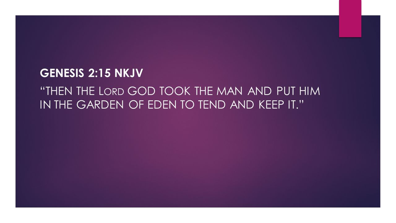 Genesis 2:15 NKJV Then the Lord God took the man and put him in the garden of Eden to tend and keep it.