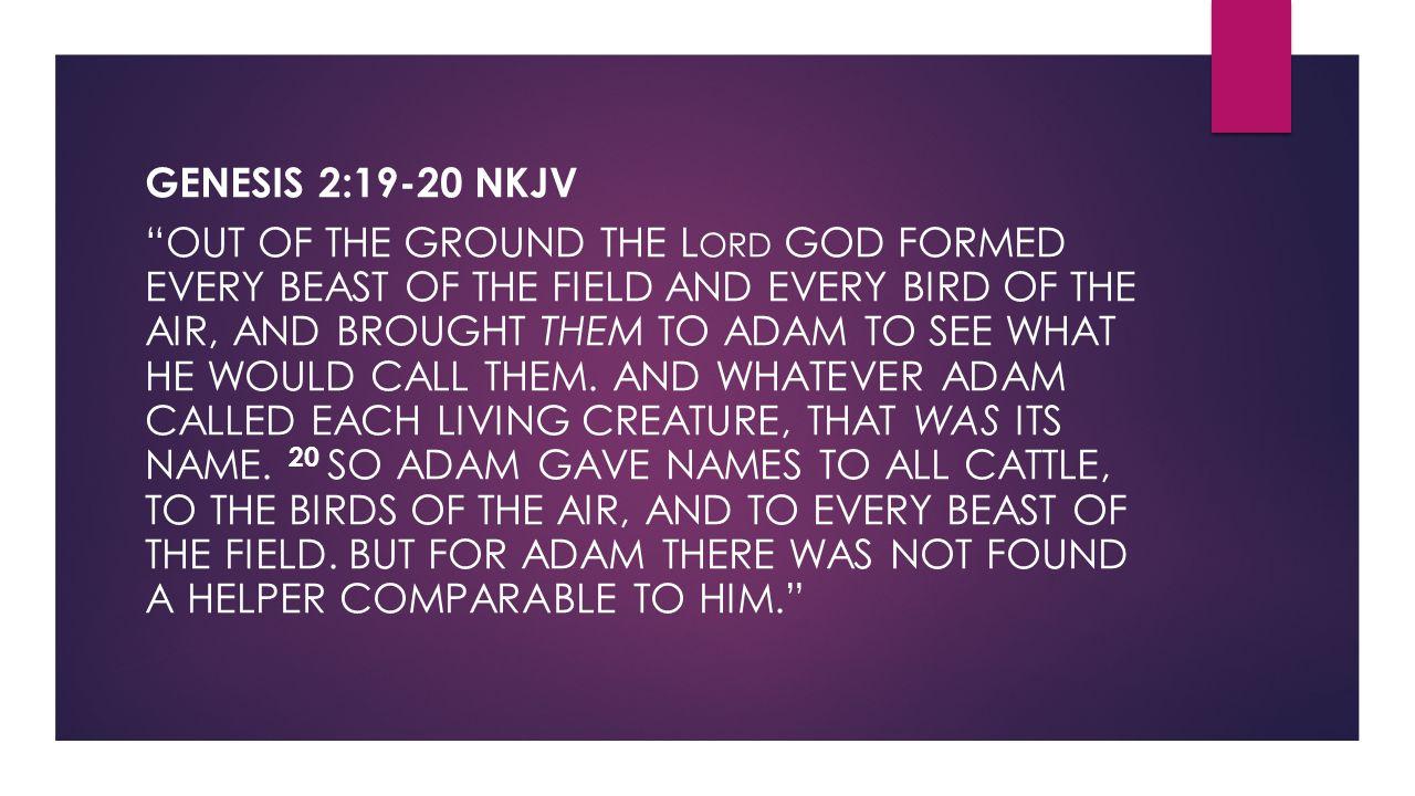 Genesis 2:19-20 NKJV