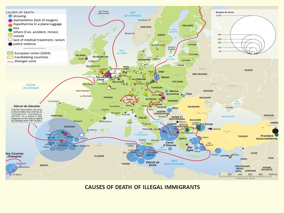 CAUSES OF DEATH OF ILLEGAL IMMIGRANTS