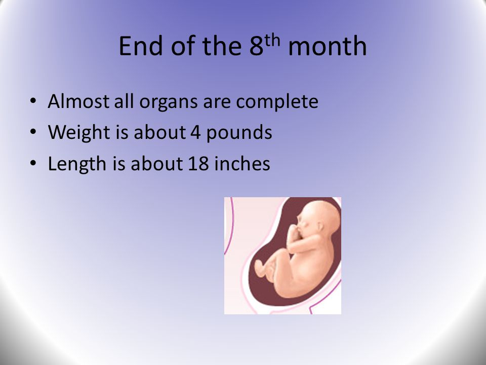 End of the 8th month Almost all organs are complete