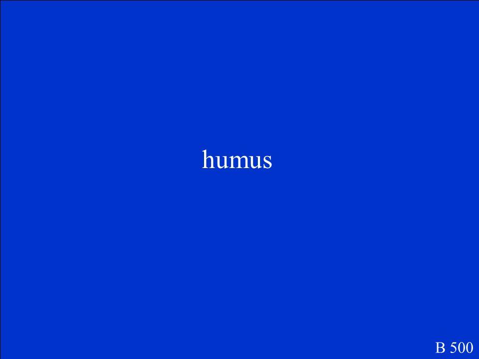 humus B 500