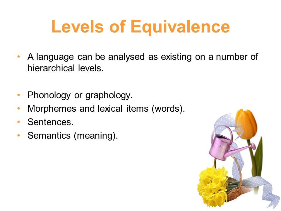 Levels of Equivalence A language can be analysed as existing on a number of hierarchical levels. Phonology or graphology.