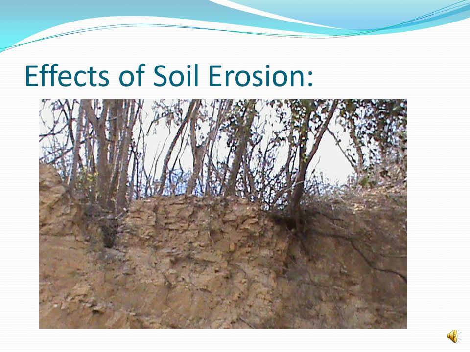 Effects of Soil Erosion: