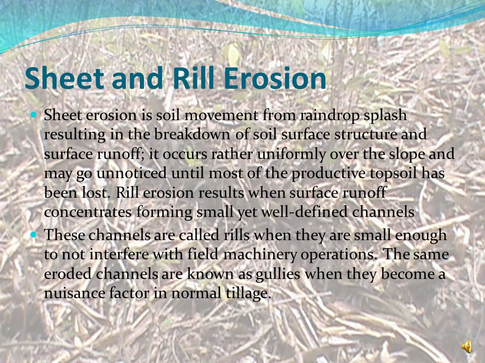 Sheet and Rill Erosion