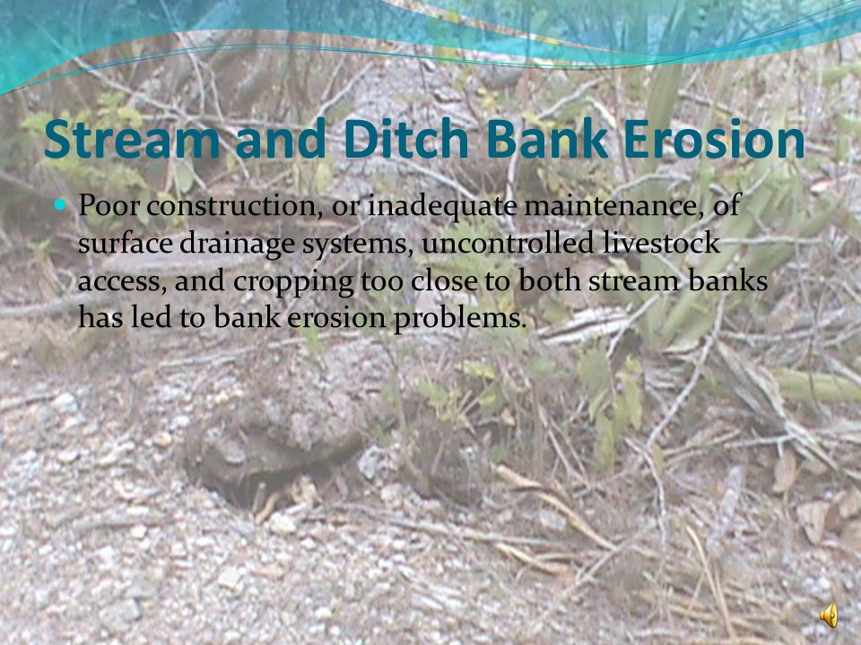 Stream and Ditch Bank Erosion