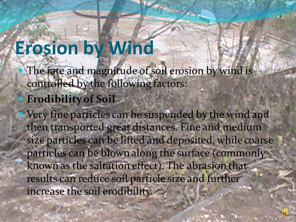 Erosion by Wind The rate and magnitude of soil erosion by wind is controlled by the following factors: