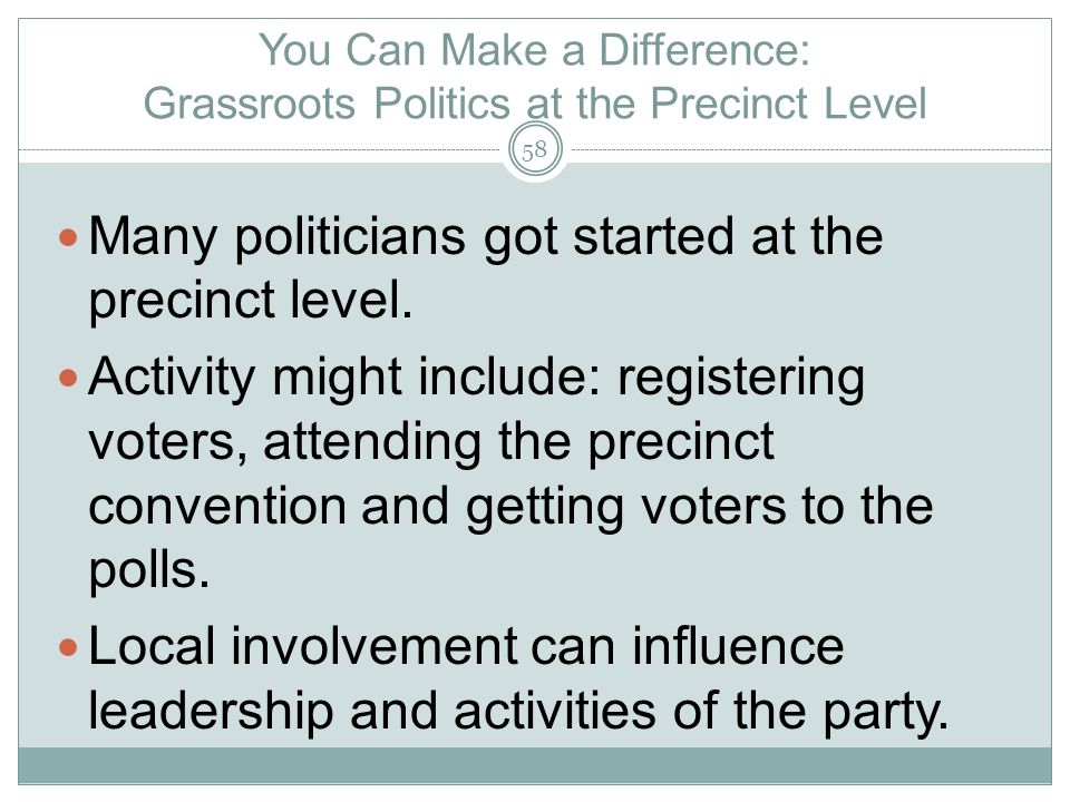 You Can Make a Difference: Grassroots Politics at the Precinct Level