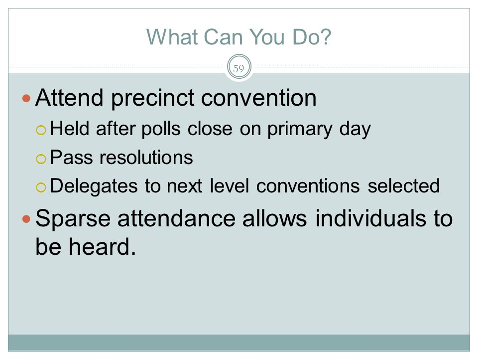 Attend precinct convention