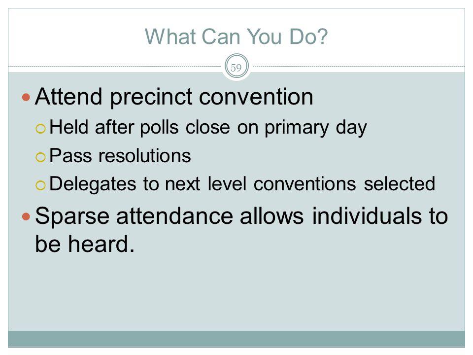 Attend precinct convention