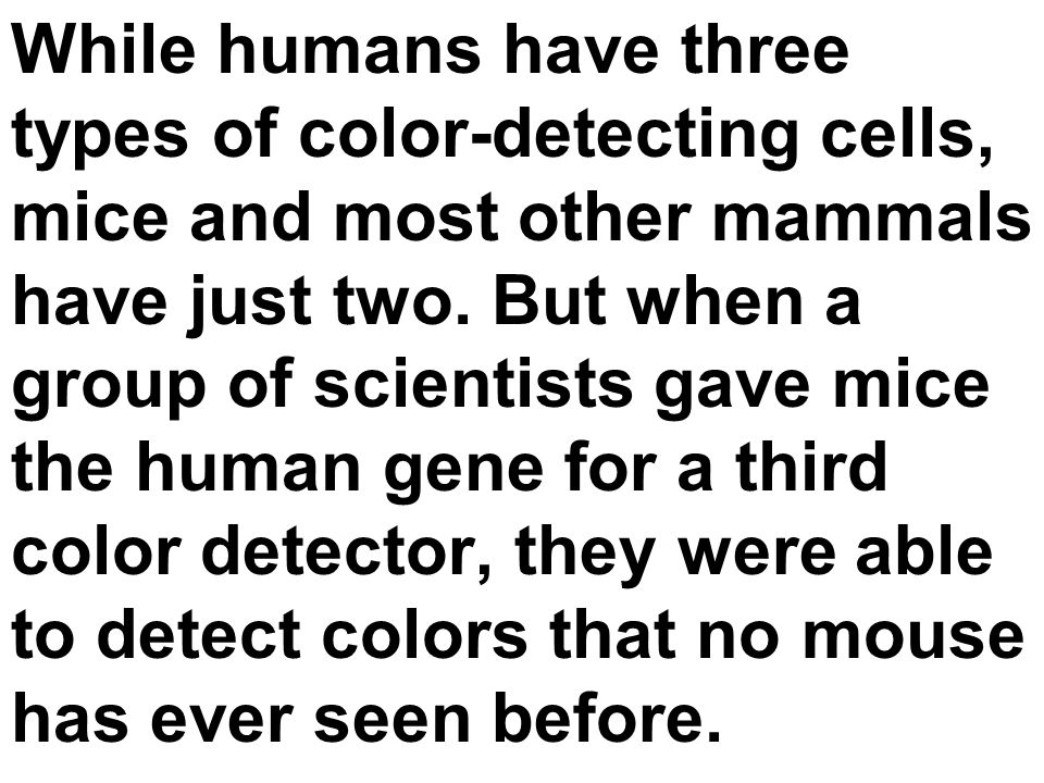 While humans have three types of color-detecting cells, mice and most other mammals have just two.