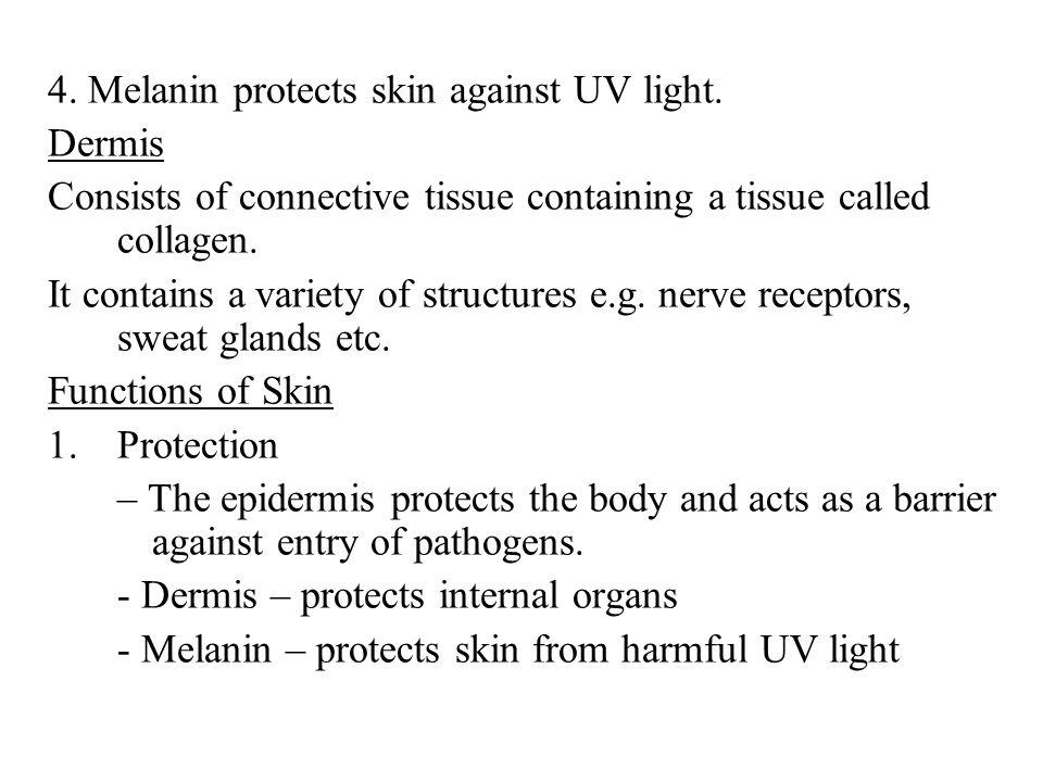 4. Melanin protects skin against UV light.