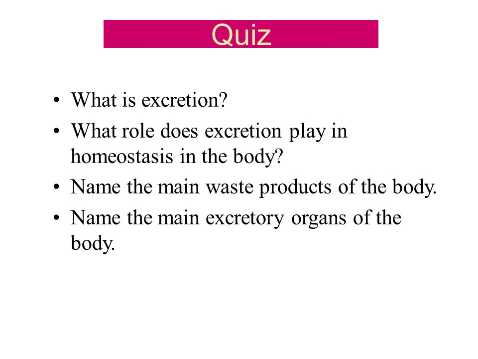 Quiz What is excretion What role does excretion play in homeostasis in the body Name the main waste products of the body.