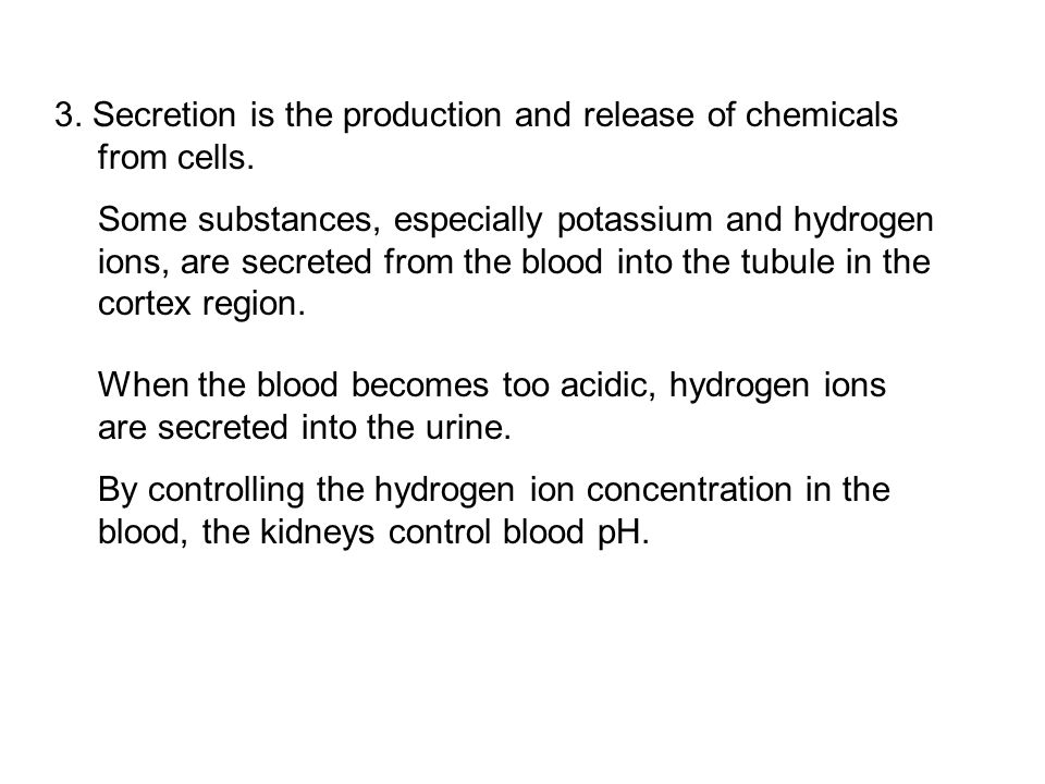 3. Secretion is the production and release of chemicals from cells.