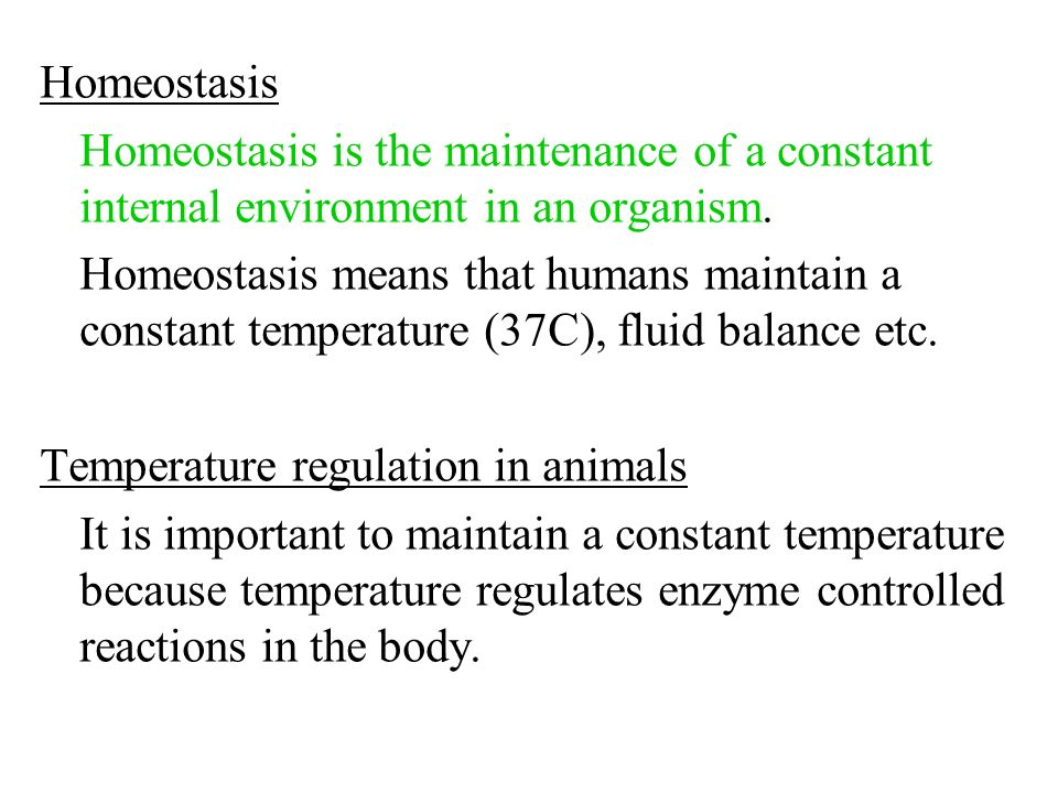 Homeostasis Homeostasis is the maintenance of a constant internal environment in an organism.