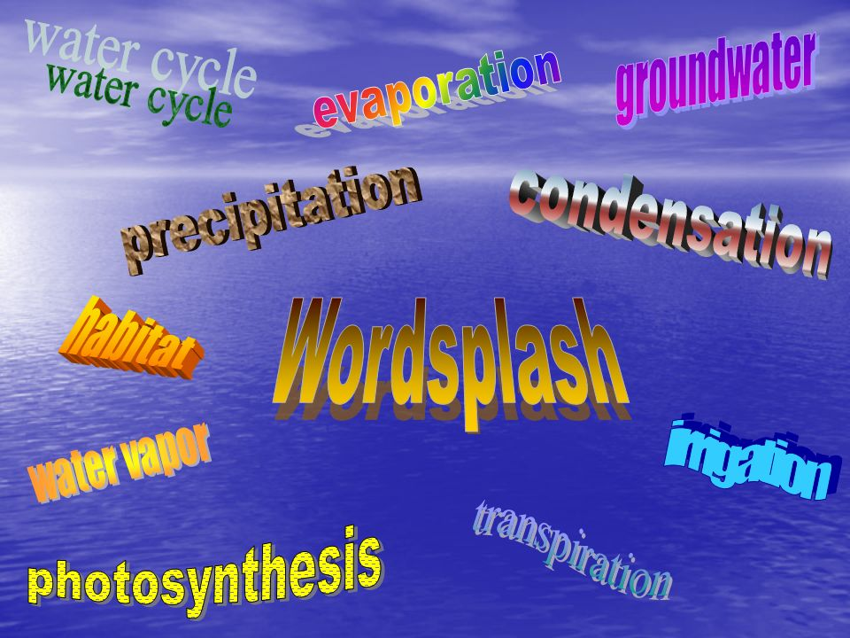 Wordsplash water cycle precipitation condensation habitat irrigation
