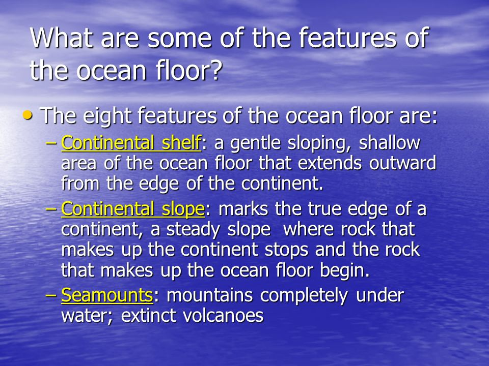 What are some of the features of the ocean floor