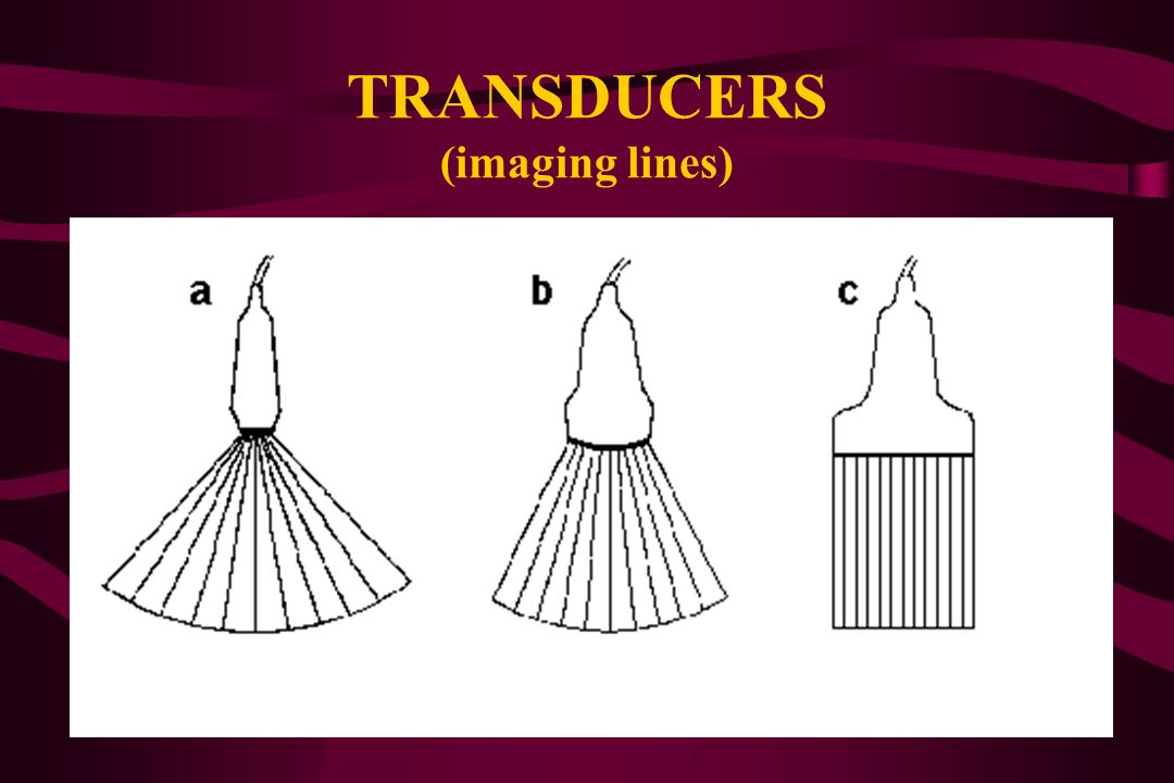 TRANSDUCERS (imaging lines)
