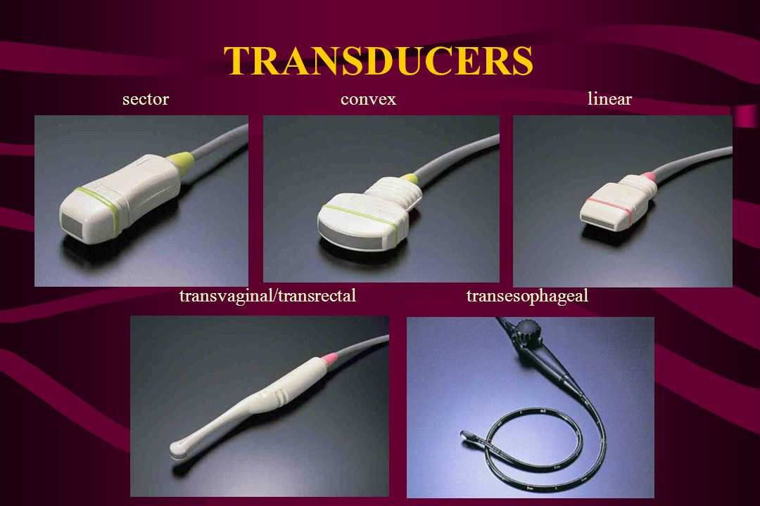 TRANSDUCERS sector convex linear
