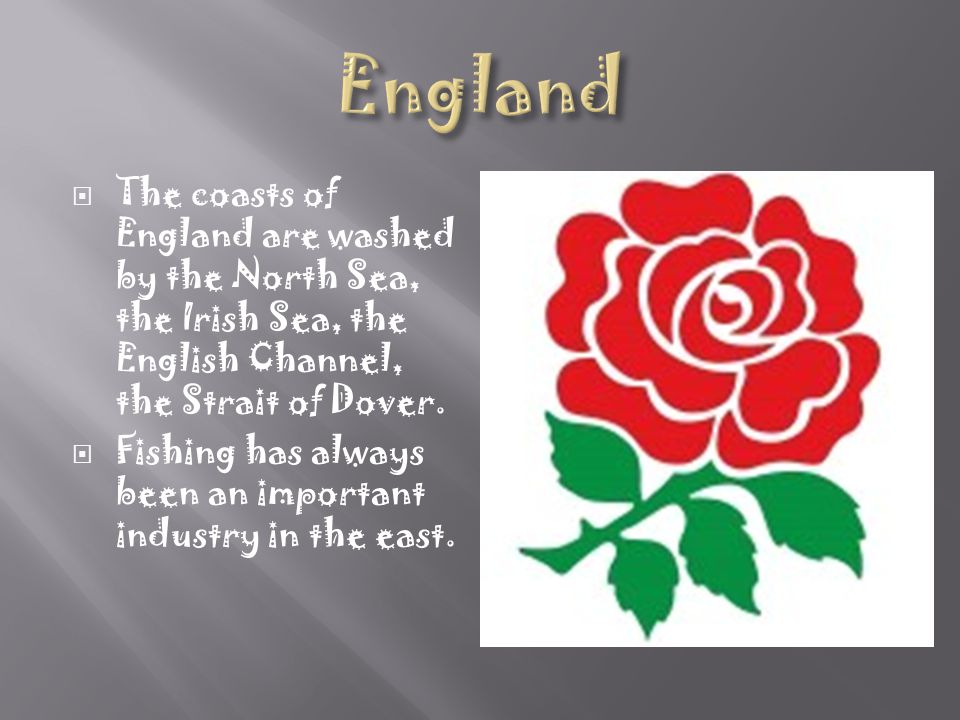 England The coasts of England are washed by the North Sea, the Irish Sea, the English Channel, the Strait of Dover.