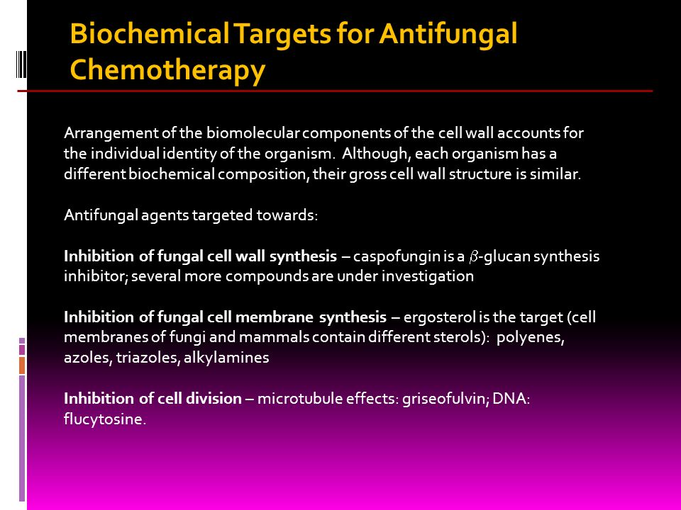 Biochemical Targets for Antifungal Chemotherapy