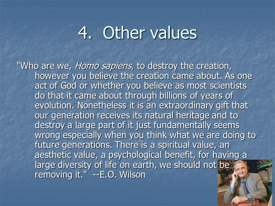4. Other values