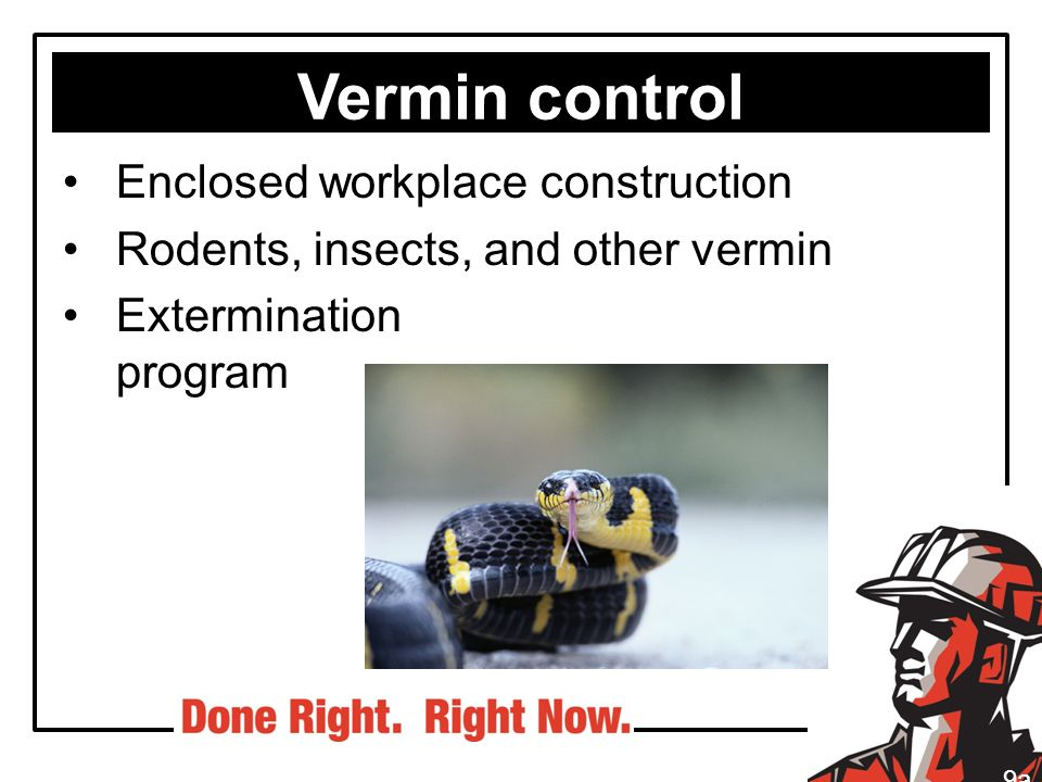 Vermin control Enclosed workplace construction