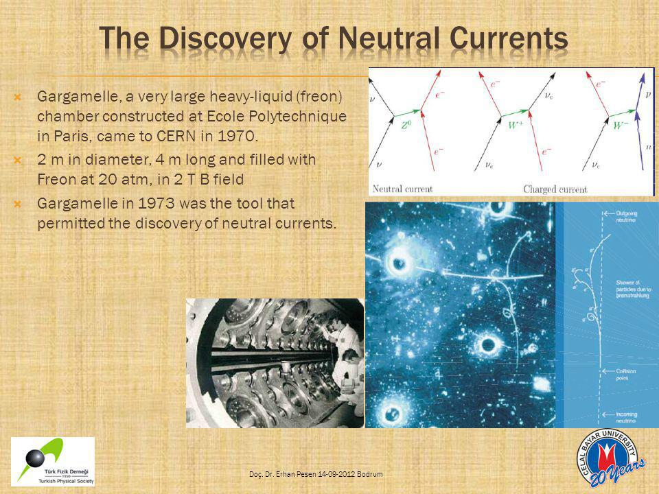 The Discovery of Neutral Currents