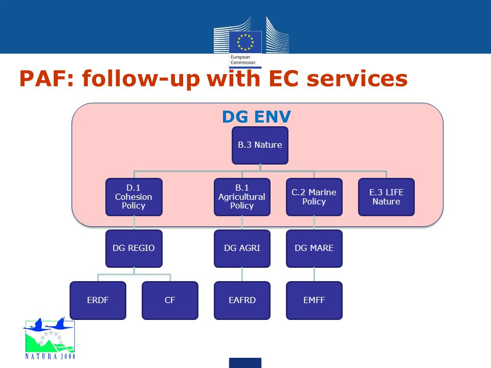PAF: follow-up with EC services