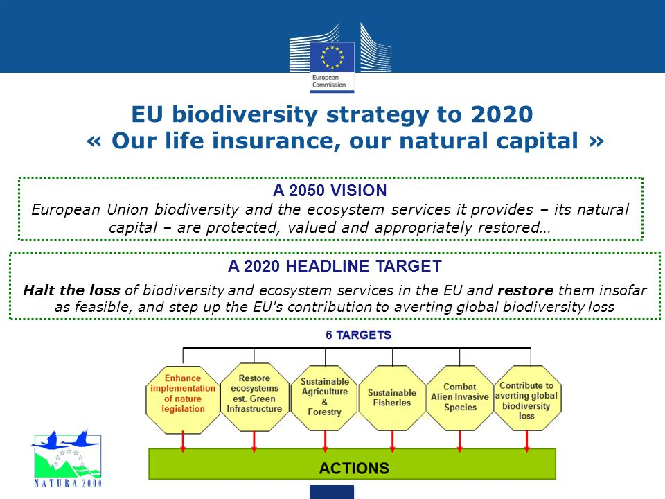 EU biodiversity strategy to 2020 « Our life insurance, our natural capital »