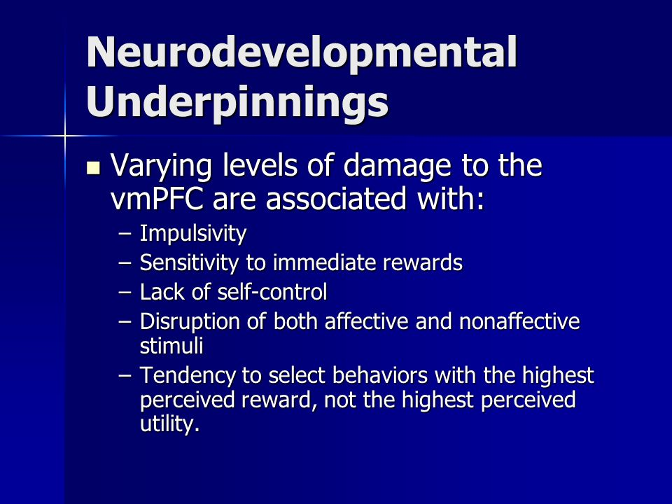 Neurodevelopmental Underpinnings
