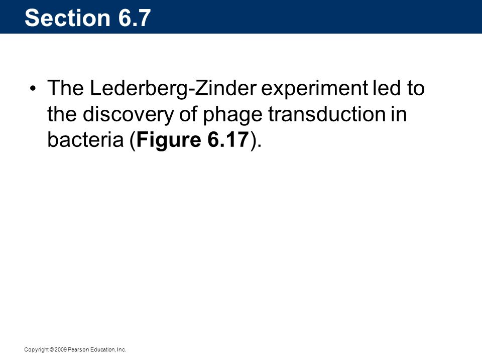 Section 6.7 The Lederberg-Zinder experiment led to the discovery of phage transduction in bacteria (Figure 6.17).