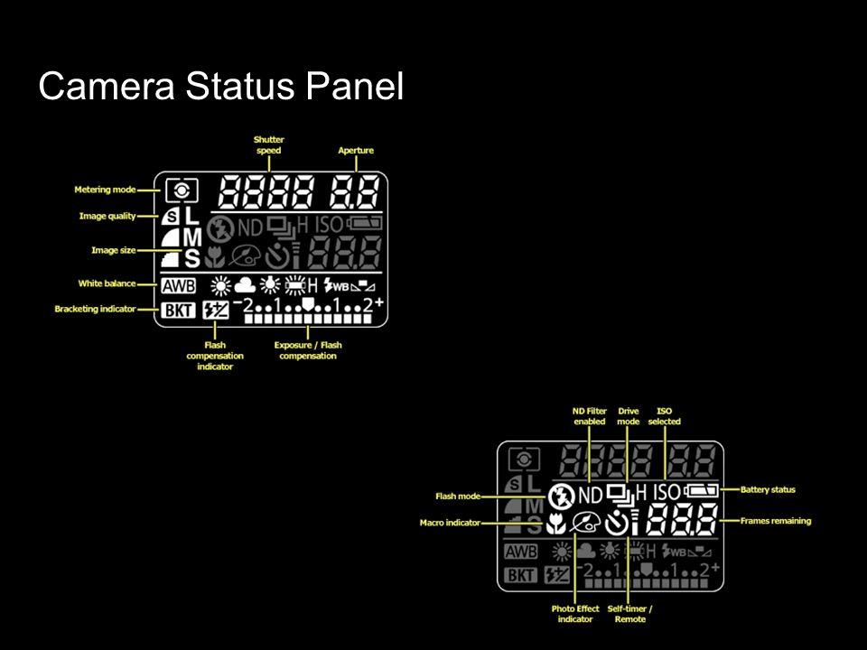 Camera Status Panel