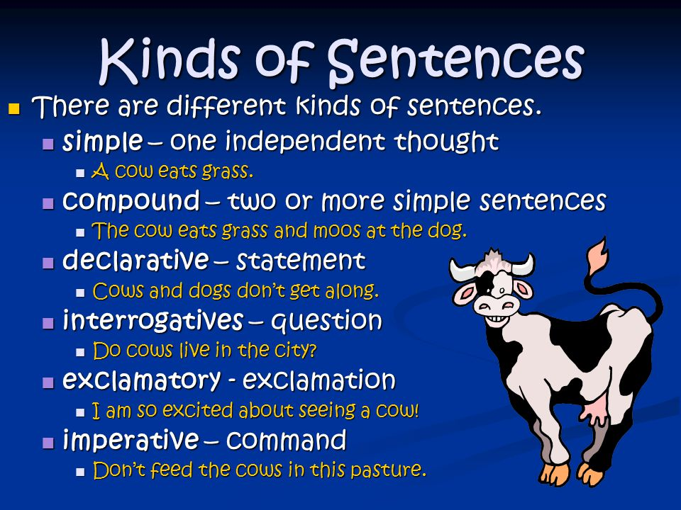 Kinds of Sentences There are different kinds of sentences.