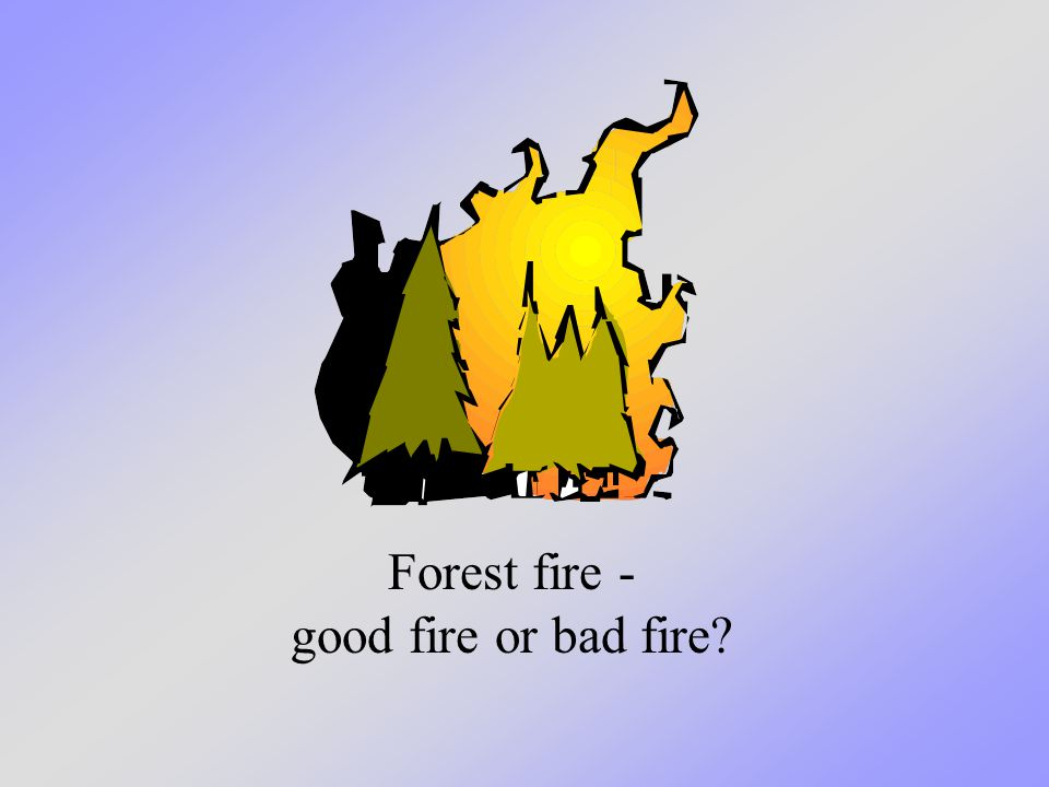 Camp fire - good fire or bad fire