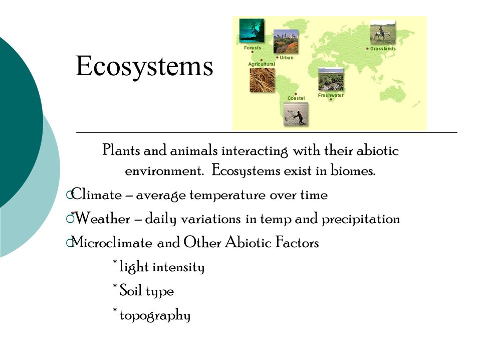 Ecosystems Plants and animals interacting with their abiotic environment. Ecosystems exist in biomes.