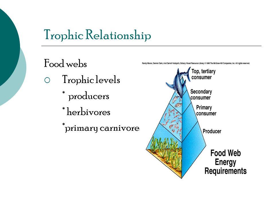 Trophic Relationship Food webs Trophic levels * producers * herbivores