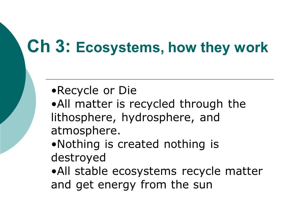Ch 3: Ecosystems, how they work