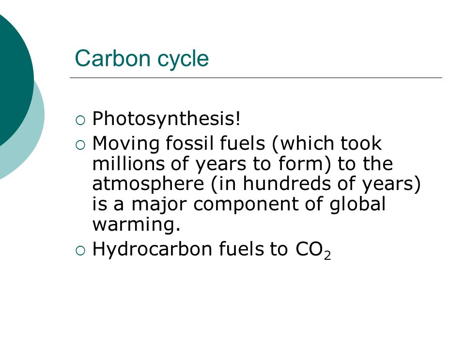 Carbon cycle Photosynthesis!