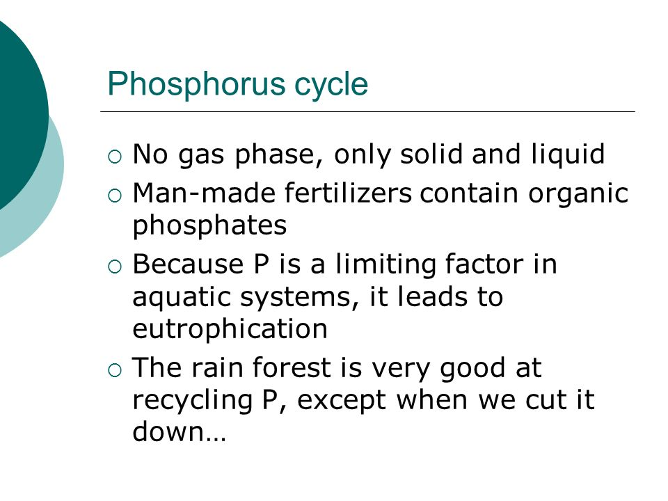 Phosphorus cycle No gas phase, only solid and liquid