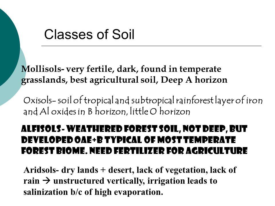 Classes of SoilMollisols- very fertile, dark, found in temperate grasslands, best agricultural soil, Deep A horizon.