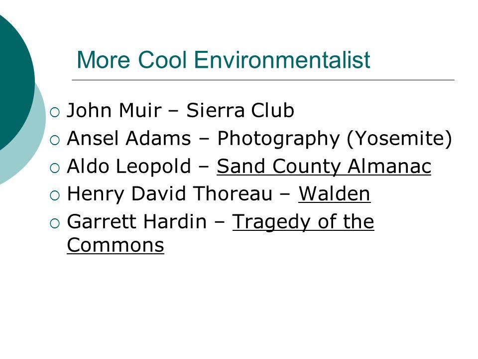 More Cool Environmentalist